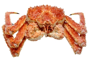 Far Eastern customs officers stopped a large smuggling of crab to China