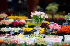 Het verbod op de import van Nederlandse bloemen