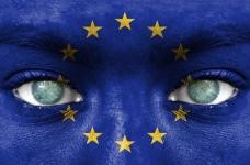 Опасные для здоровья субпродукты из Европы