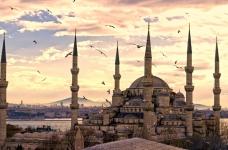Турецкие поставщики продуктов питания