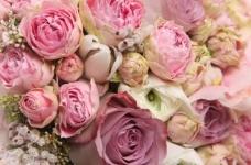 FAS خواسته برای لغو محدودیت های گمرکی بر واردات از گل در روسیه